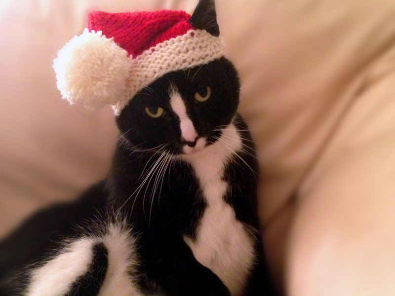 FACE as Santa Claws
